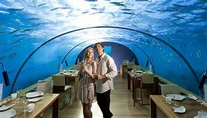 Hilton's Maldives Underwater Hotel: The Ultimate Room With ...