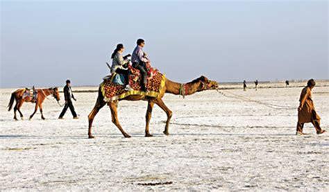 World Market Carpets by Kutch And Rann Utsav 2014 Zee News