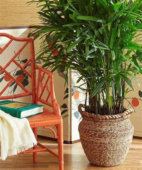 quelle plante pour une chambre quelle plante pour quelle pièce de votre intérieur