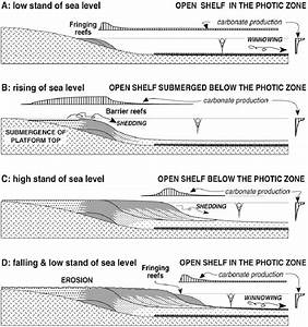 Diagrams Showing Accretion Of Reef