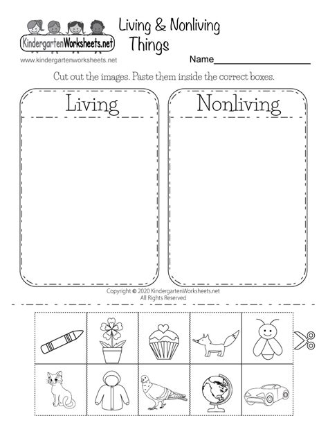 life science worksheet  kindergarten learning