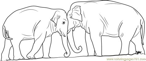 Elephant Fighting Coloring Page For Kids Free Elephant