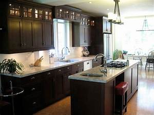dark brown kitchen 2 With brown and black kitchen designs
