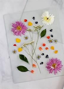 Blumen Trocknen Ohne Farbverlust : how to pressing framing flowers lily val living ~ A.2002-acura-tl-radio.info Haus und Dekorationen