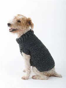 Keep Your Dog Warm With A Crochet Dog Sweater Crochet