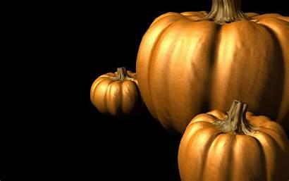 Pumpkin Wallpapers Halloween