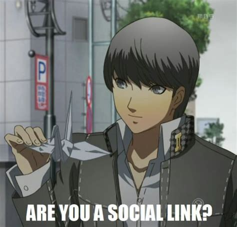 Persona 4 Memes - persona 3 and 4 memes and pictures anime amino
