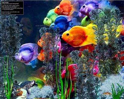 Screensavers Microsoft Background Wallpapers Wallpapersafari