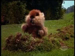 I Once Knew a G... Caddyshack Gopher