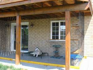 1000 ideas about dog enclosures on pinterest cat With dog enclosure ideas