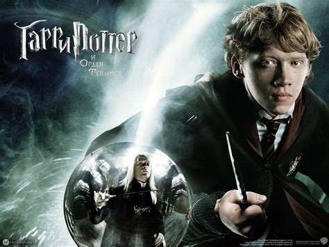 harry potter harry potter the order of the wallpaper 24888566 fanpop
