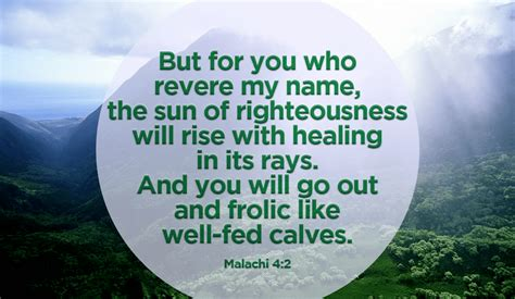 30 Popular Healing Bible Verses And Best Scripture