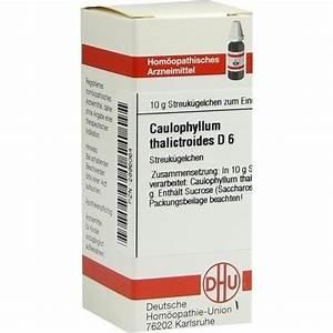 caulophyllum d6