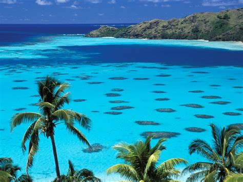 A Guide For An Amazing French Polynesia Vacation Tourist