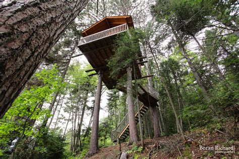 maison en bois dans les arbres maisons dans les arbres parc aventures cap jaseux