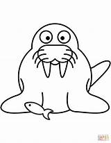Walrus Coloring Pages Cartoon Drawing Outline Printable Dot Clipart Getdrawings sketch template