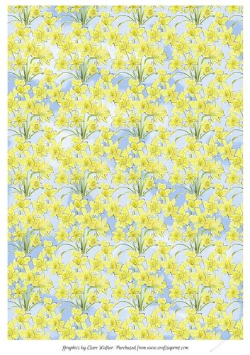 DAFFODILS BACKGROUND/BACKING PAPER: Floral A4 Daffodil