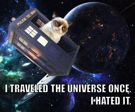Doctor Who Cat Meme - whovians memes only babycenter
