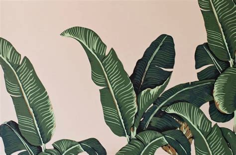 jungle  forest inspired wallpaper prints wellgood