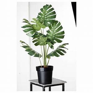 Ikea Plantes Artificielles : ikea 19 99 beach house hub bam hub competition pinterest plantes artificielles ~ Teatrodelosmanantiales.com Idées de Décoration