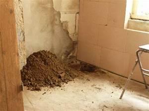 Dämmung Außenwand Material : haus das badezimmer ~ Whattoseeinmadrid.com Haus und Dekorationen