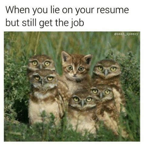 when you lie on your resume but still get the speezy