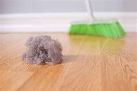 dust cleaning household bust spring sweeping indoor computer rid quickly tips homes hardwood bunny floor found maid duster pinned origin