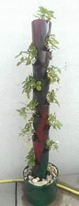 Pflanzenwand Selber Machen : die besten 25 vertikaler garten diy ideen auf pinterest ~ Whattoseeinmadrid.com Haus und Dekorationen