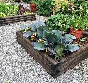 Kräuter Zusammen Pflanzen : tipps zum hochbeet bepflanzen welche pflanzen passen zusammen ~ Whattoseeinmadrid.com Haus und Dekorationen