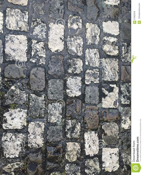 White Paving Stones by Paving Stones Stock Photo Image 57602318