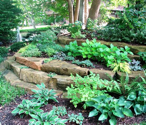 gardening shade shade gardens indianapolis