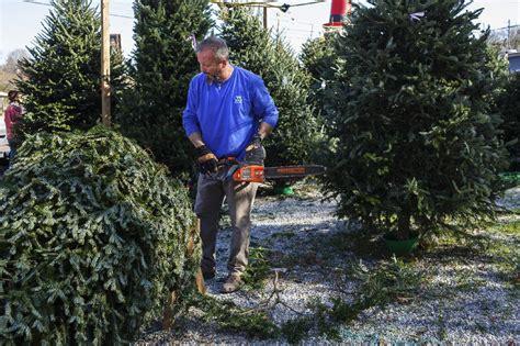 christmas tree farm chattanooga tn despite nationwide christmas tree shortage local sellers 8691