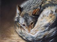 Colored Pencil Drawing Wolves