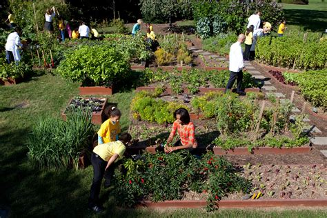 the kitchen garden the white house kitchen garden fall harvest and grilled