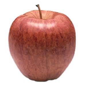 Apples - Sage Fruit