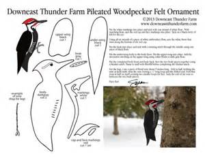 the iconic pileated woodpecker downeast thunder farm