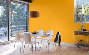 Couleur De Peinture Pour Salon Salle A Manger : couleur de salle a manger ~ Dailycaller-alerts.com Idées de Décoration