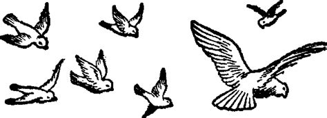 Free Flying Cliparts, Download Free Clip Art, Free Clip