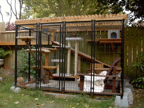 catio ideas it s a catio daddio safe outdoor access for frisky felines zillow blog