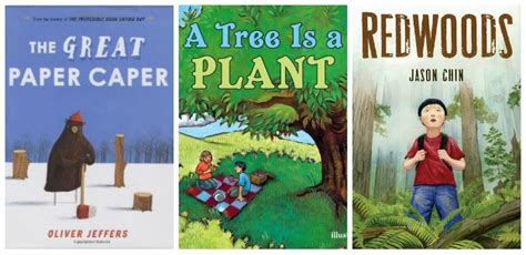 redwood forest preschool redwood forest pre school in cast 573 | childrens books about trees for preschoolers