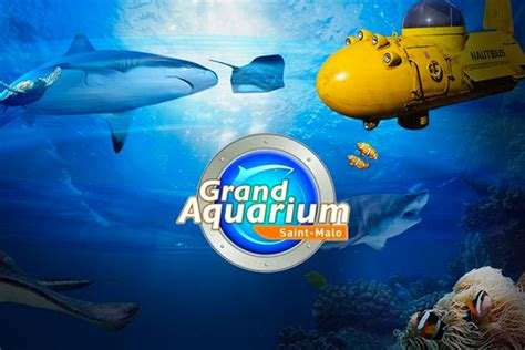 grand aquarium malo hotel chateaubriand 224