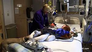 Meet Vito! Children's Hospital Pet Therapy Dog - YouTube
