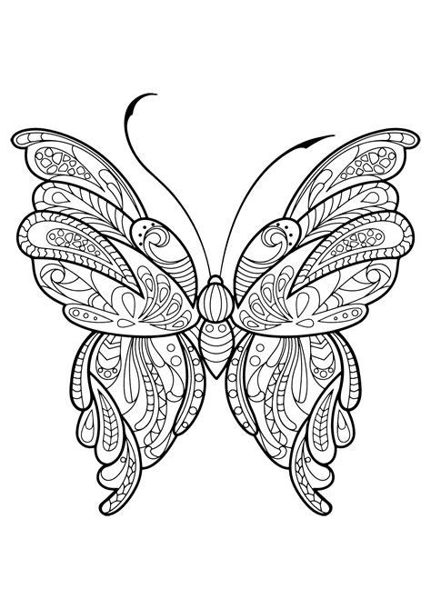 disegni da colorare per adulti farfalle insetti 32491 farfalle e insetti disegni da colorare