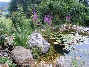 Teich Im Garten : teiche biotope gartenanlage gartengestaltung gartenbau ~ Lizthompson.info Haus und Dekorationen