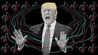 Trump Tiktok Ban Wechat China Tok Tik