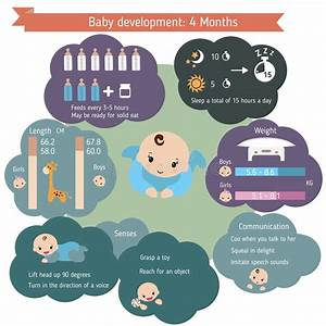 Baby Growth Development Stock Illustrations  U2013 2 864 Baby