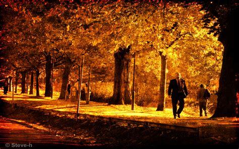 autumn gold 1280x800 wallpaper