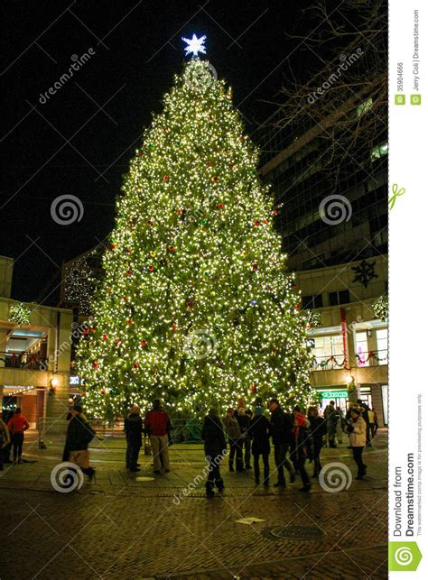christmas tree at faneuil hall boston ma editorial