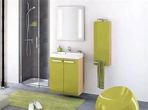 Meuble Sdb Pas Cher : meuble salle de bain faible profondeur pas cher ~ Edinachiropracticcenter.com Idées de Décoration