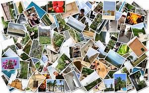 Fotos Als Collage : fotocollagen auf alu und acryl ihr foto auf alu dibond aluminium aludruck ~ Markanthonyermac.com Haus und Dekorationen